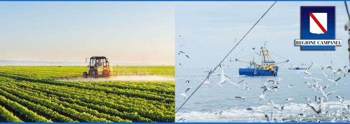 Misure a sostegno delle imprese dell'agricoltura e della pesca